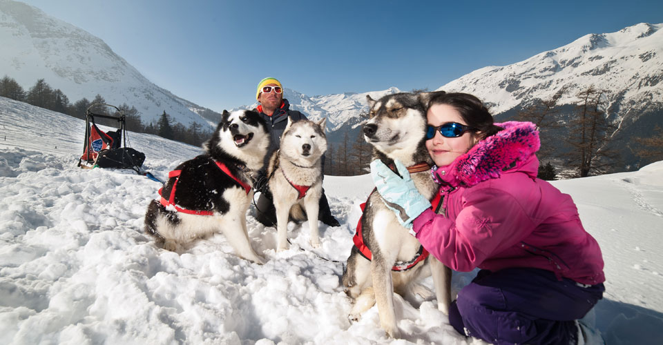Photo: Alban Pernet - Val Cenis husky dogs